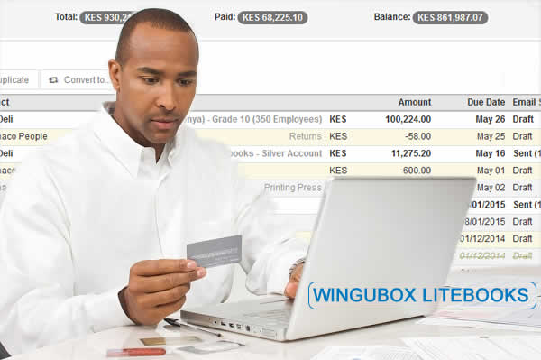 wingubox litebooks - online accounting